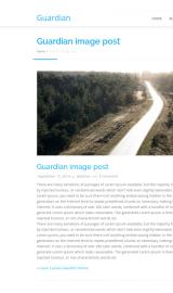 پیش نمایش موبایل قالب وردپرس Guardian