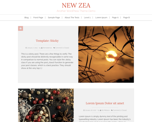 دانلود رایگان قالب وردپرس New Zea