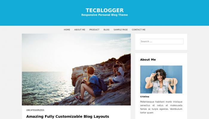 پیش نمایش دسکتاپ قالب وردپرس Tecblogger