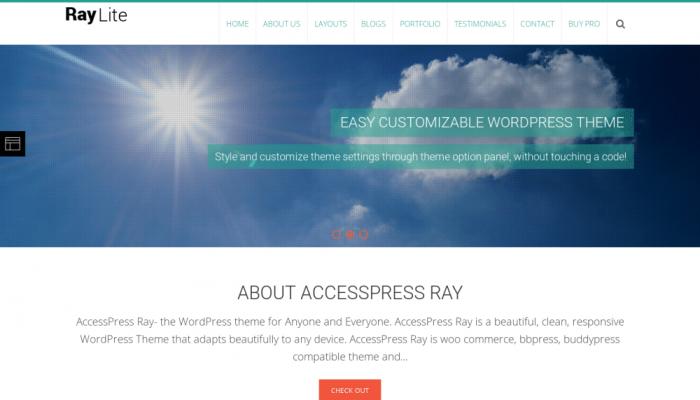 پیش نمایش دسکتاپ قالب وردپرس AccessPress Ray