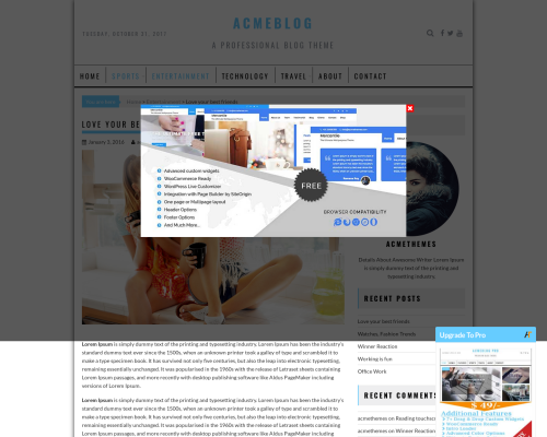 دانلود رایگان قالب وردپرس AcmeBlog