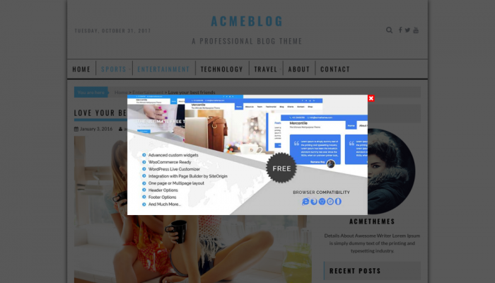 پیش نمایش دسکتاپ قالب وردپرس AcmeBlog