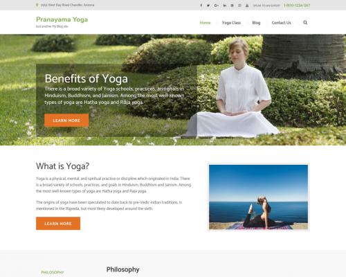 دانلود رایگان قالب وردپرس Pranayama Yoga
