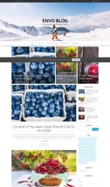 پیش نمایش موبایل قالب وردپرس Envo Blog