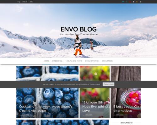 دانلود رایگان قالب وردپرس Envo Blog