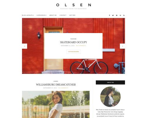 دانلود رایگان قالب وردپرس Olsen Light