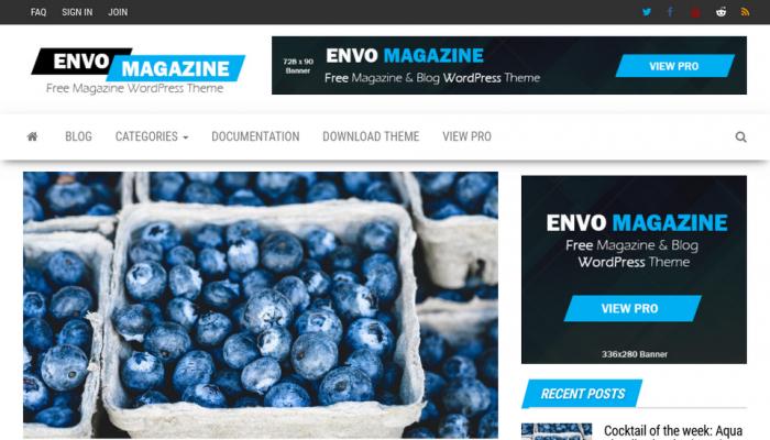 پیش نمایش دسکتاپ قالب وردپرس Envo Magazine