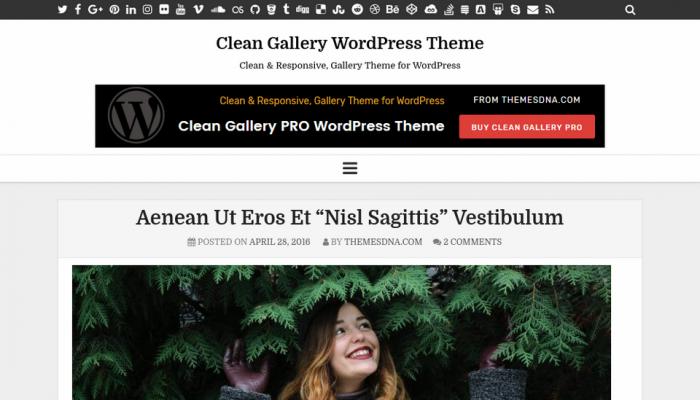 پیش نمایش دسکتاپ قالب وردپرس Clean Gallery