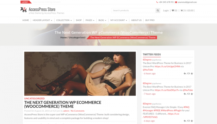 پیش نمایش دسکتاپ قالب وردپرس AccessPress Store