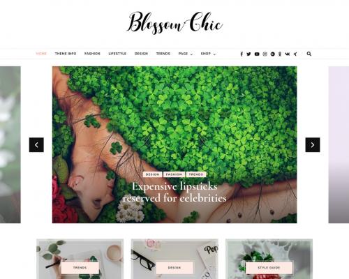 دانلود رایگان قالب وردپرس Blossom Chic