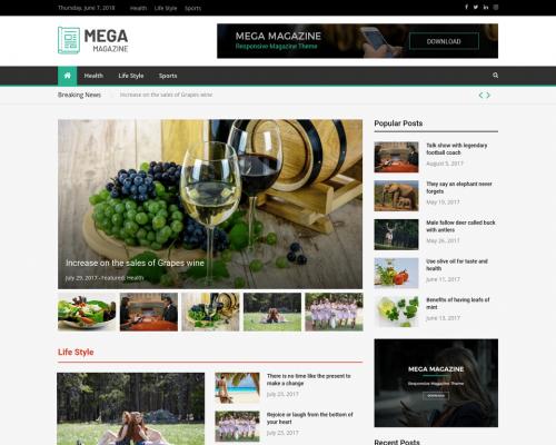 دانلود رایگان قالب وردپرس Mega Magazine