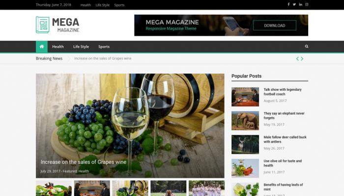 پیش نمایش دسکتاپ قالب وردپرس Mega Magazine