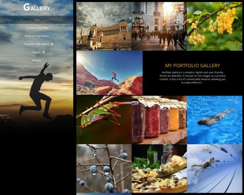 دانلود رایگان قالب وردپرس Portfolio Gallery