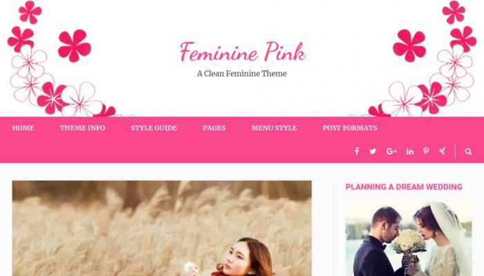 پیش نمایش دسکتاپ قالب وردپرس Feminine Pink