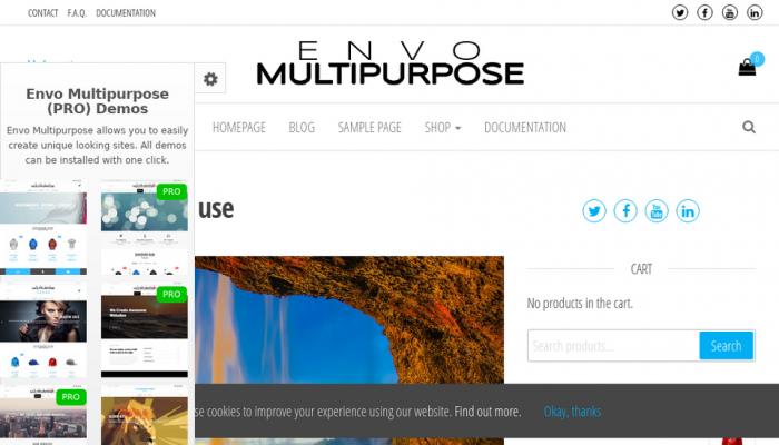 پیش نمایش دسکتاپ قالب وردپرس Envo Multipurpose