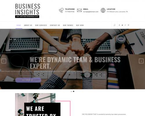 دانلود رایگان قالب وردپرس Business Insights