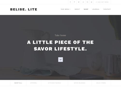 دانلود رایگان قالب وردپرس Belise Lite