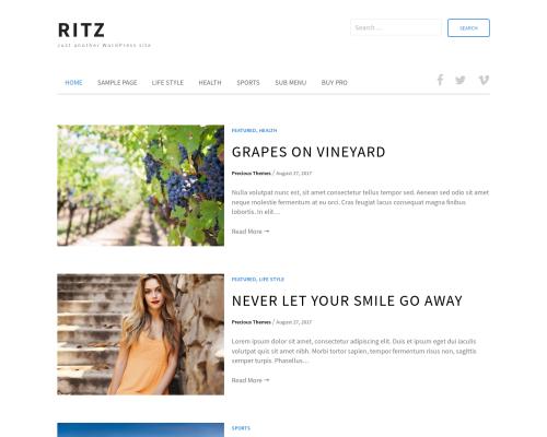 دانلود رایگان قالب وردپرس Ritz