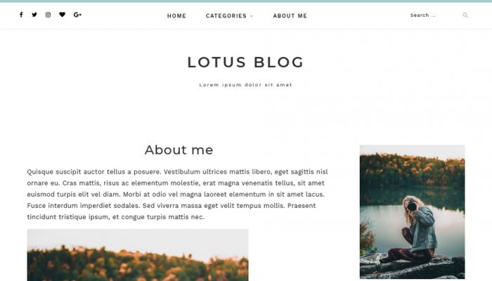 پیش نمایش دسکتاپ قالب وردپرس Lotuslite