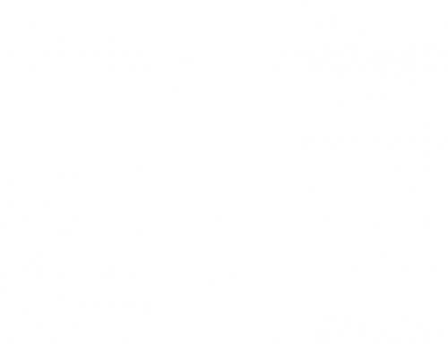 دانلود رایگان قالب وردپرس NovelLite
