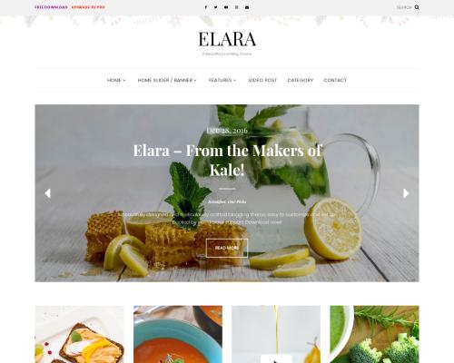 دانلود رایگان قالب وردپرس Elara